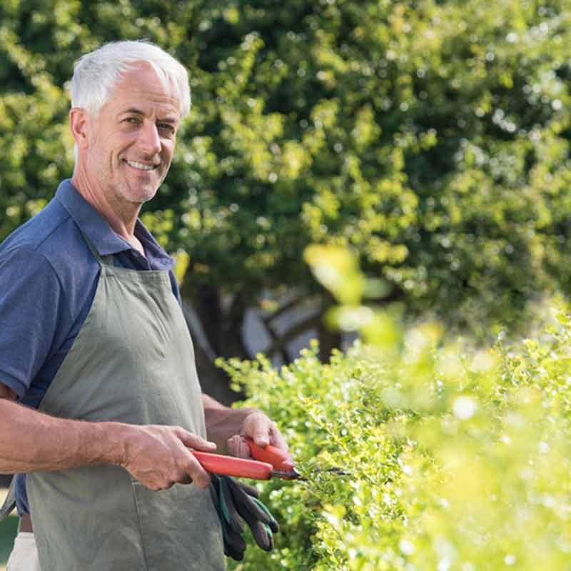 Simply Helping Hedging