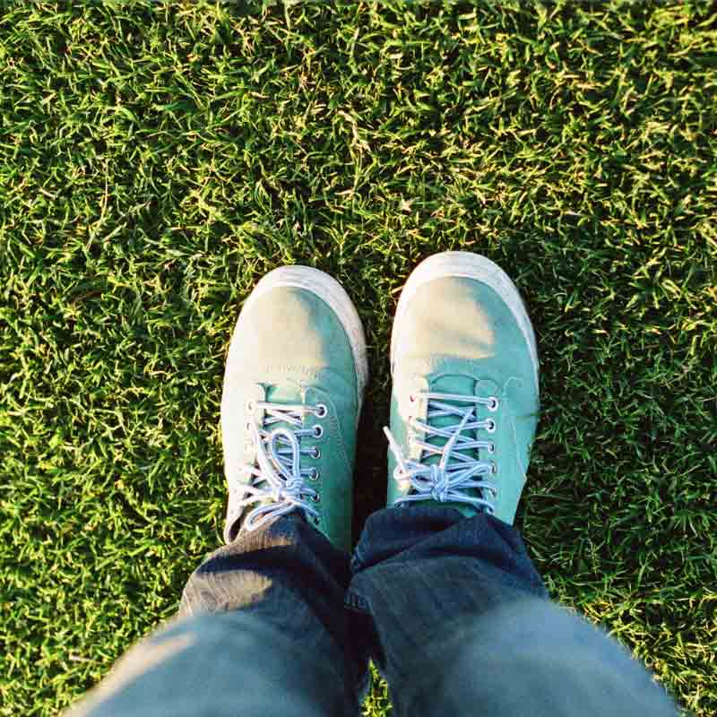 Lawn Care Tips for Spring